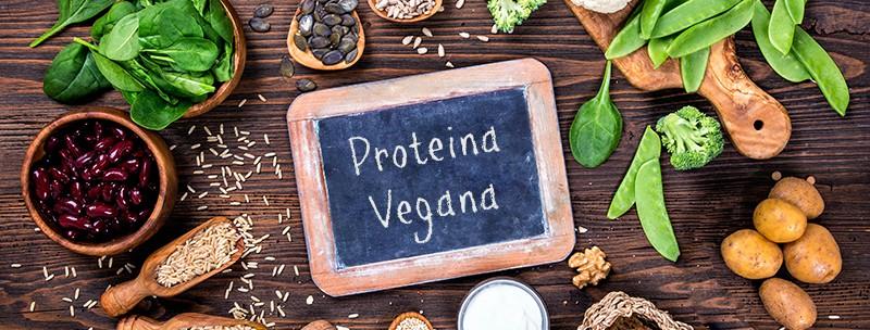 proteina-vegana